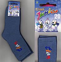 Носки детские махровые Класик Украина размер 20 синие НДЗ-30
