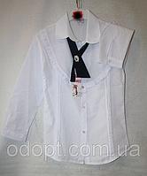 Блуза на девочку в школу купить оптом в Украине (128-152 р)