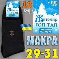 Носки мужские махровые Топ-Тап Житомир Украина  29-31р. НМЗ-84