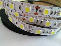 LED лента Epistar 24 вольта 5050 60 шт/m 10W/m IP33