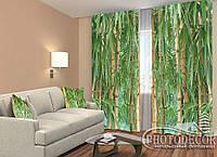"""ФотоШторы """"Бамбуковый лес"""" 2,5м*2,6м (2 половинки по 1,30м), тесьма"""