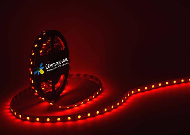 Светодиодная лента красная MTK 14,4Вт/м. smd 5050 IP20, фото 2