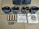 Поршнева група Газель 405 інжектор (96.0 мм), фото 2