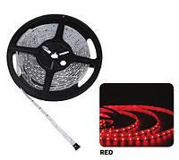 Светодиодная LED5050 лента AMAZON-RED, фото 1