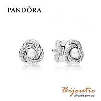 Серьги Pandora ЛЮБОВНЫЕ УЗЫ #290740WCP серебро 925 цирконий Пандора оригинал