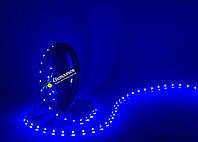 Светодиодная лента синяя MTK 4,8Вт/м. smd 3528  (аналог LS603)
