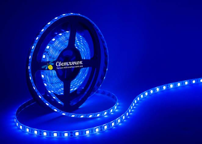 Светодиодная лента синяя MTK 14,4Вт/м. smd 5050 в силиконе, фото 2