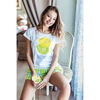 """Женская хлопковая пижама (футболка+шорты) """"Лимонад"""" ТМ Key оптом, Польша  р.M (170 см)"""