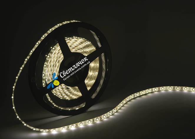 Светодиодная лента MTK белая теплая 4,8Вт/м. smd 3528 в силиконе (аналог LS604), фото 2