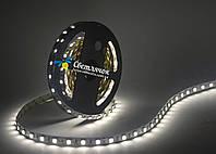 Светодиодная лента белая MTK 14.4Вт/м. smd 5050 60шт/м (аналог LS606)