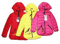 Куртки детские на осень для девочки HL 212