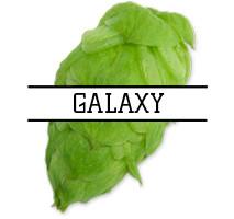 Хмель Galaxy (AU) 2018г - 100г