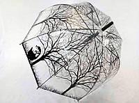 Прозрачный зонт-трость с принтом