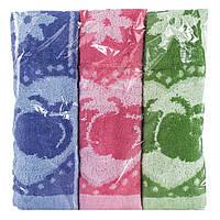 Набор махровых кухонных полотенец Яблоко 3 шт