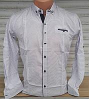 Стильная коттоновая рубашка для мальчика 7-12 лет(опт) (белая1705) (пр. Турция)