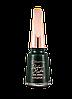 Матовый лак для ногтей Flormar FUTURE HISTORICAL, Moss 006 (2739006)