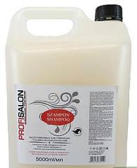 Шампунь для волосся -каністра-5л. з олією макадамії та кератином (для фарбованого волосся) PROFI SALON