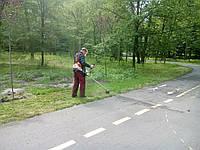 Косить траву Покосить траву в Киеве Выкосить траву и бурьян, фото 1