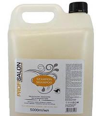 Шампунь для волосся -каністра-5л. з аргановою олією та протеїни шовку(ддя сухого і пошкодженого волосся) PROFI