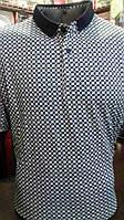 Мужская футболка-полона пуговицах Stefano Ricci