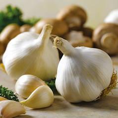 Озимый чеснок Мессидром 60+ (Messidrome) TOP Onions - 1 кг