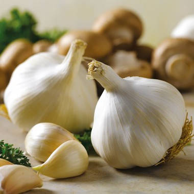 Озимый чеснок Мессидром 60+ (Messidrome) TOP Onions - 1 кг, фото 2