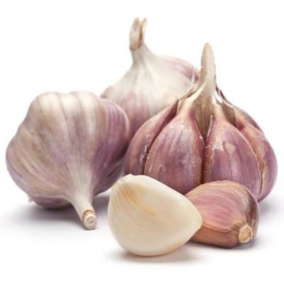 Озимый чеснок Мессидор 60+ TOP Onions - 1 кг, фото 2
