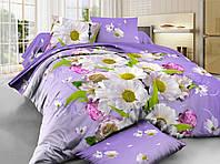 Комплект постельного белья евро 200*220 хлопок  (6365) TM KRISPOL Украина