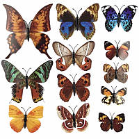 Симпатичный декор для вашей квартиры, 3д бабочки, коричневые