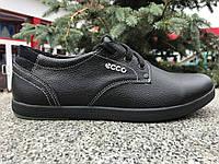 Мужские кожаные спортивные туфли  comfort  Ecco  черные 40, 41, 42, 43, 44, 45