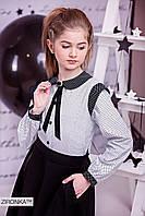 Блузка школьная для девочки  в горох хлопковая