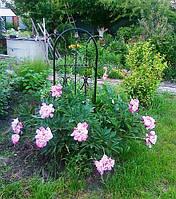 Малые архитектурные формы  для цветов, фото 1