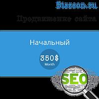 """Продвижение сайта """"Начальный"""""""