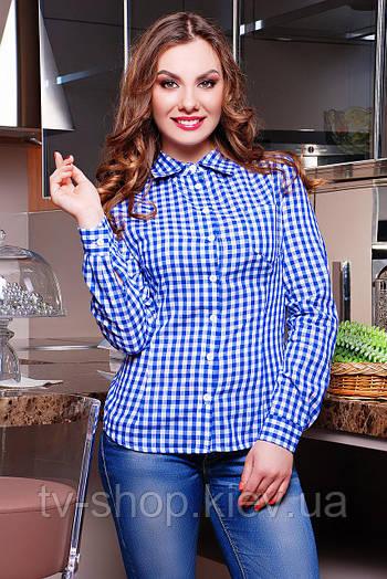 рубашка GLEM блуза Шериф д/р