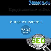 """Продвижение сайта """"Интернет-магазин"""""""