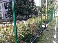 Забор из сварной сетки  Дуос 6*5*6 3*2.43, фото 1
