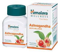 Ашваганда (Ashwagandha)-омолаживает. Himalaya Herbals 60 таб.