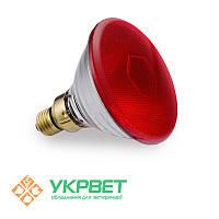 Инфракрасная лампа для обогрева свиней PAR38, 100 Вт, Е27