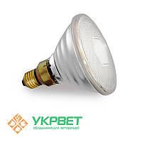Инфракрасная лампа для обогрева свиней PAR38, прозрачная, 100 Вт, Е27