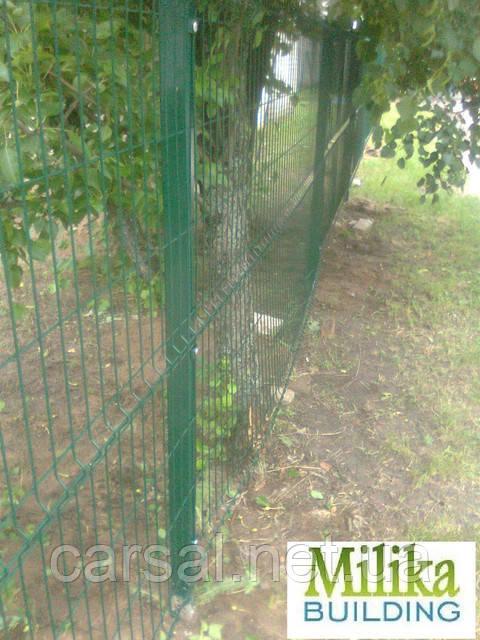 Забор из сварной сетки  Оригинал 5*5 2,5*1.53