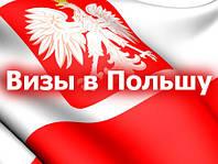 Помощь в оформлении документов для визы в Польшу