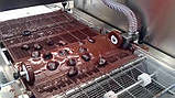 Линия производства чернослива в шоколадной глазури 320 мм, фото 2