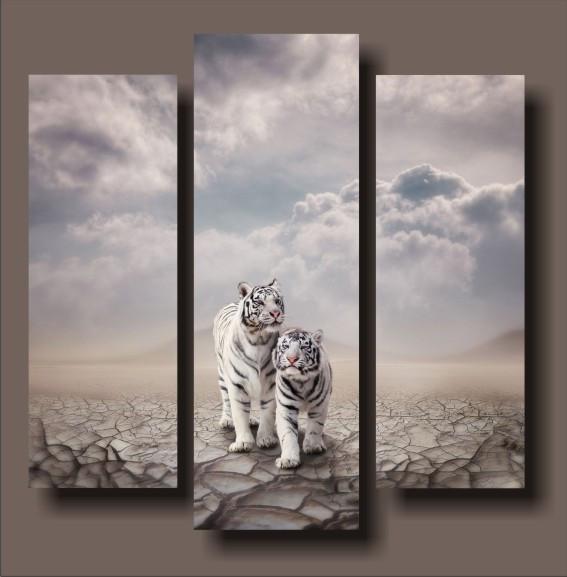 """Модульна картина """"Білі тигри"""""""