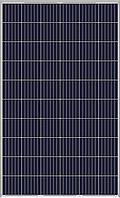 Фотоэлектрический модуль Yingli Solar YL260P-29b