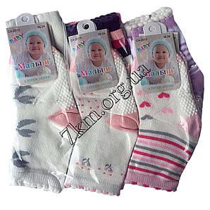 Носки детские для девочек Baby Малыш 0-6 месяца хлопок Оптом CA-2015