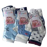 Носки детские для мальчиков Baby Малыш 0-8 месяца хлопок Оптом CB-2016