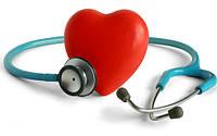 Сердечно-сосудистая система, сосуды