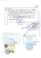 Легализация Диплома/Аттестата в МОН и Посольстве. Бесплатная доставка