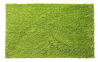 Килимок д/ванни KARLSTAD 50x80см зелений