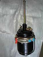 Камера тормозная c энергоаккуммулятором тип 24/24, DAF, RENAULT (925 321 300 0)